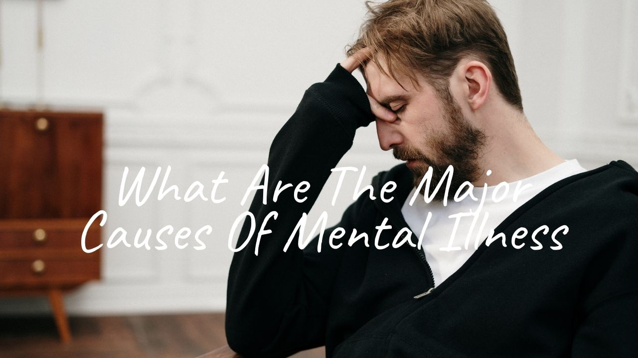 What Are The Major Causes Of Mental Illness