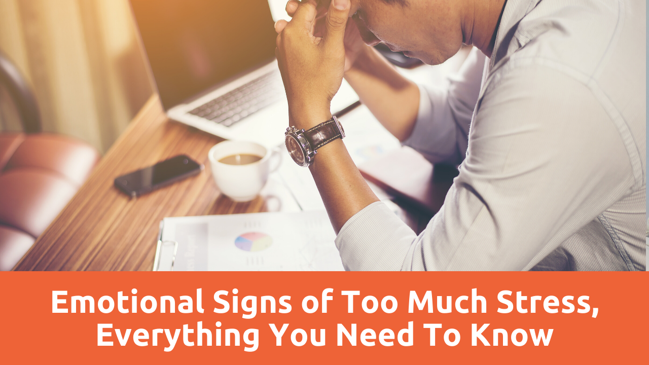 Emotional Signs of Too Much Stress, Everything You Need To Know